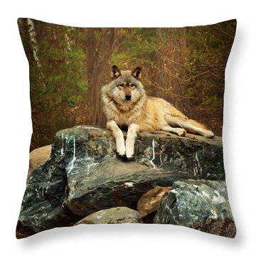Just Chilling Throw Pillow