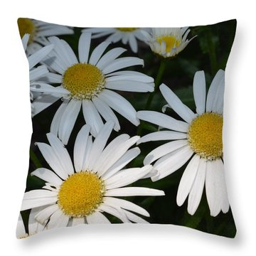 Just Daises Throw Pillow