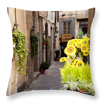 Just Down The Road Throw Pillow by Rae Tucker