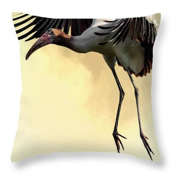 Just Dropping In Throw Pillow by Cyndy Doty