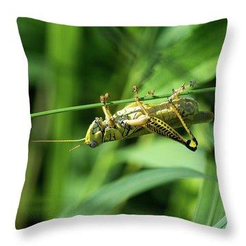 Just Hangin Around Throw Pillow