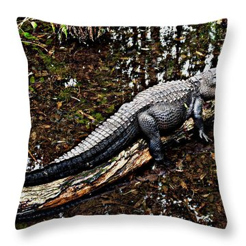 Just Hanging Out Throw Pillow