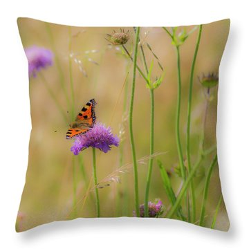 Just Landed Throw Pillow