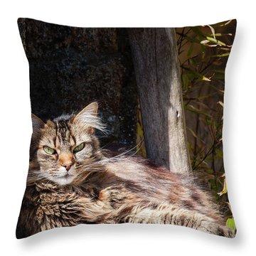 Just Lazing Around Throw Pillow