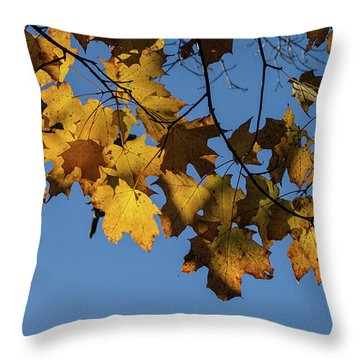 Just Leaves Throw Pillow