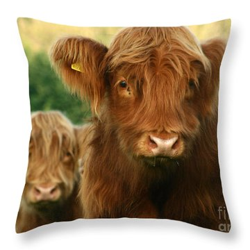 Just Like  Teddy Bears Throw Pillow by Angel  Tarantella