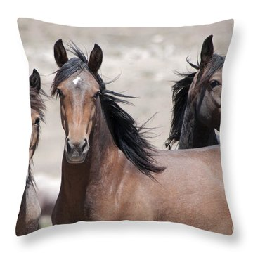 Just Looking Throw Pillow by Lula Adams