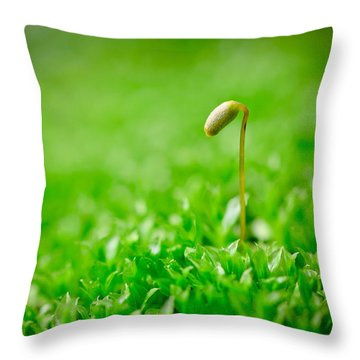 Just Needed Some Alone Time Throw Pillow
