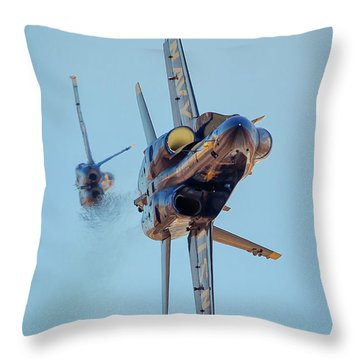Just Passing Through Throw Pillow