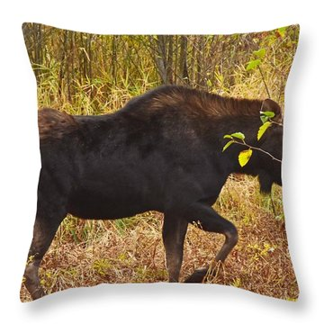 Just Passing Trhough Throw Pillow
