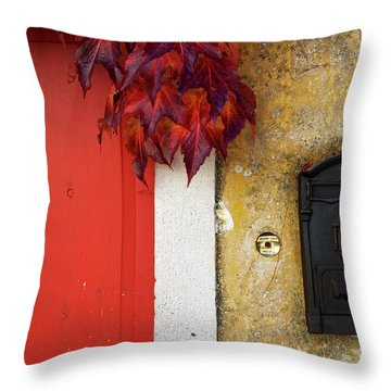 Throw Pillow featuring the photograph Just Red by Yuri Santin