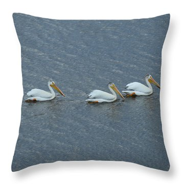 Triple Pelicans Lake John Swa Co Throw Pillow