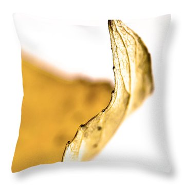 Just The Edge Throw Pillow by Sandra Foster