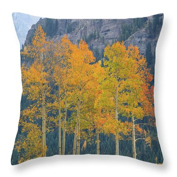 Throw Pillow featuring the photograph Just The Ten Of Us by David Chandler