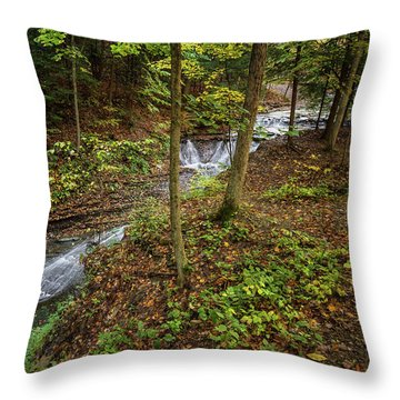 Throw Pillow featuring the photograph Just To Be by Dale Kincaid