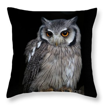 Just Waiting Throw Pillow by Gary Bridger
