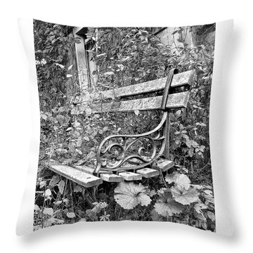 Throw Pillow featuring the photograph Just Yesterday by Tom Cameron