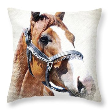 Justify Throw Pillow
