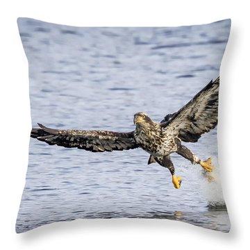 Juvenile Bald Eagle Fishing Throw Pillow