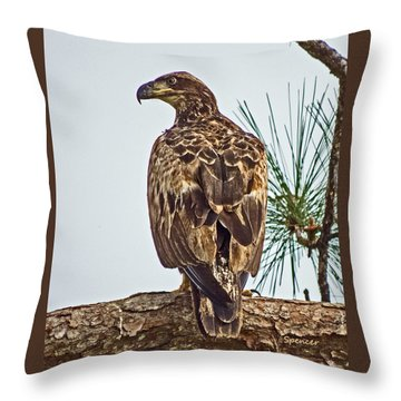 Juvenile Throw Pillow