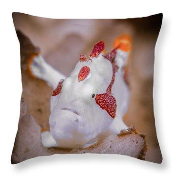 Juvenile Warty Frogfish Throw Pillow