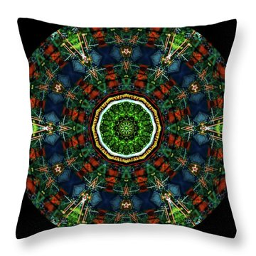 Throw Pillow featuring the digital art Ka061516 by David Lane