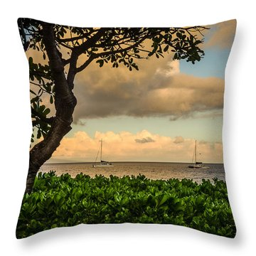 Throw Pillow featuring the photograph Ka'anapali Plumeria Tree by Kelly Wade
