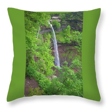 Kaaterskill Falls 2018 Throw Pillow