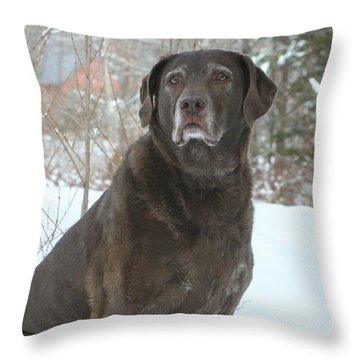 Kacey Pup Throw Pillow