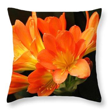 Kaffir Lily #2 Throw Pillow