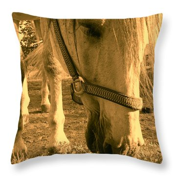 Kahn I Throw Pillow