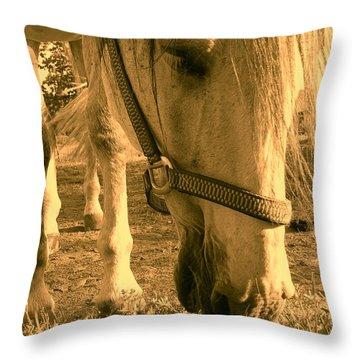 Kahn I Throw Pillow