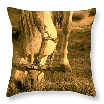 Kahn I I Throw Pillow
