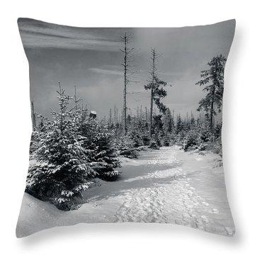 Kaiserweg, Harz Throw Pillow