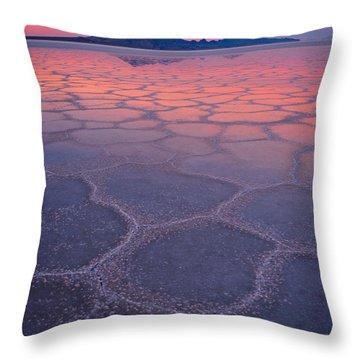 Kaleidocopic Throw Pillow