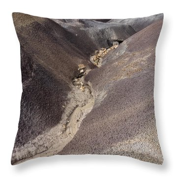 Throw Pillow featuring the photograph Kaleidoscope Landscape by Melany Sarafis