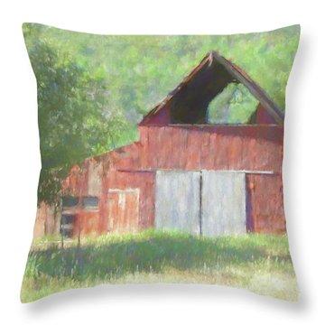 Kamas Barn Dop Throw Pillow