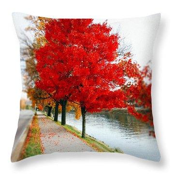 Kanawha Boulevard In Autumn Throw Pillow