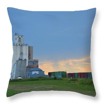 Edson Kansas Throw Pillow