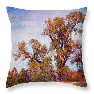 Throw Pillow featuring the photograph Kansas Autumn Lane by Anna Louise