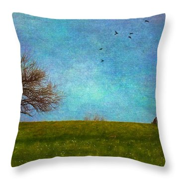 Kansas Early Spring Prairie Throw Pillow