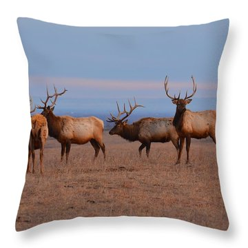 Kansas Elk Panarama Throw Pillow