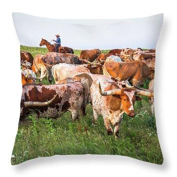 Kansas Flint Hills Longhorns Throw Pillow