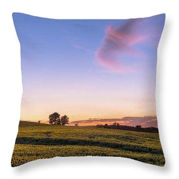 Kansas In Color Throw Pillow