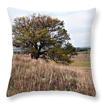 Kansas One Tree Hill Square Throw Pillow