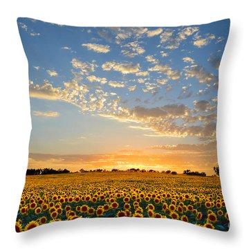 Kansas Sunflowers At Sunset Throw Pillow