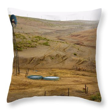 Kansas Watering Hole Throw Pillow