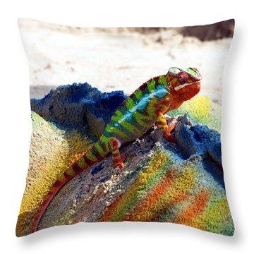 Karma Kameleon  Throw Pillow