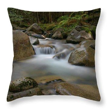 Katahdin Stream Cascades Throw Pillow
