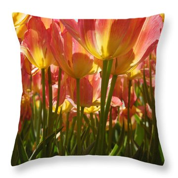 Kathy's Tulips IIi Throw Pillow